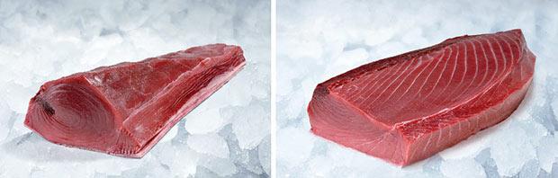 Partes del atún
