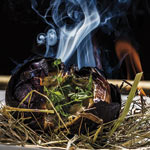cebolla negra de Raurich