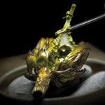 alcachofa con pistacho
